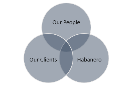 Habanero Consulting Group, Steven Fitzgerald, Caterina Sanders